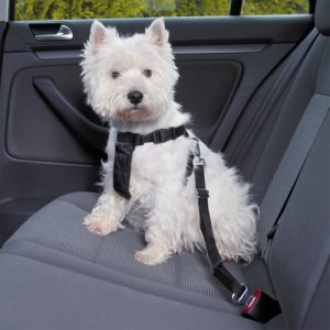 Postroj pro psa do auta Trixie