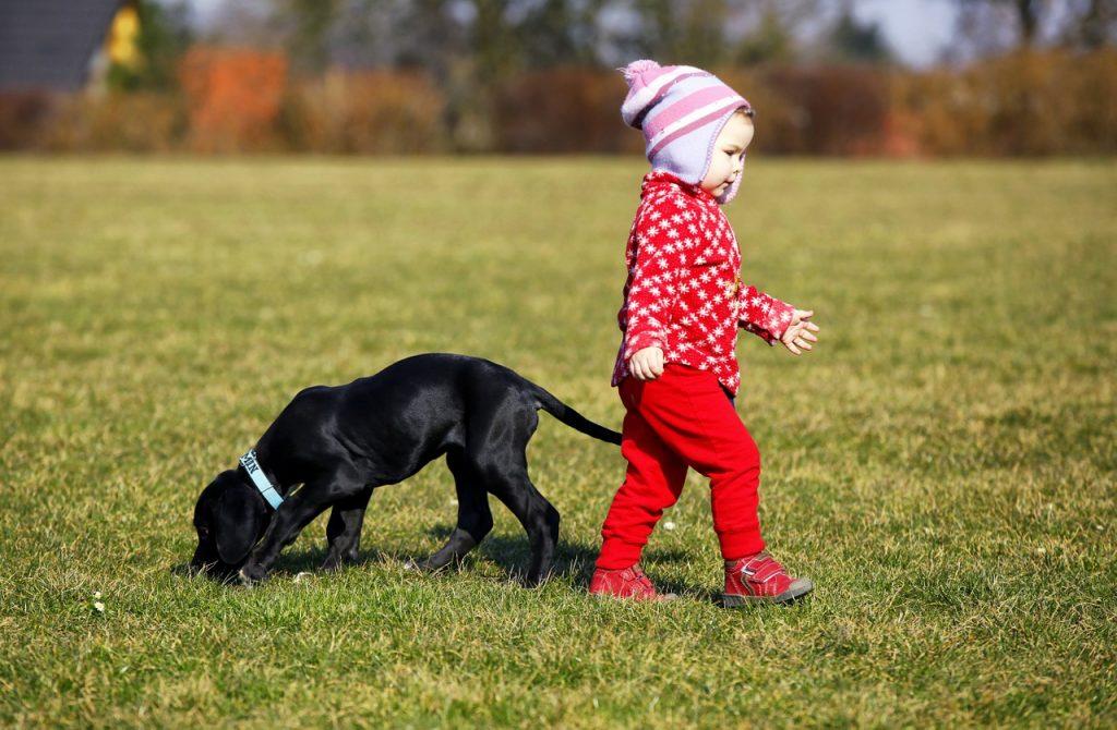 dítě se psem