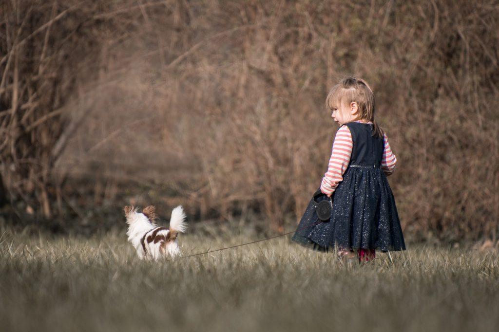 dítě venčí psa
