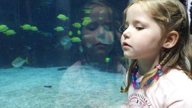 dítě a rybičky